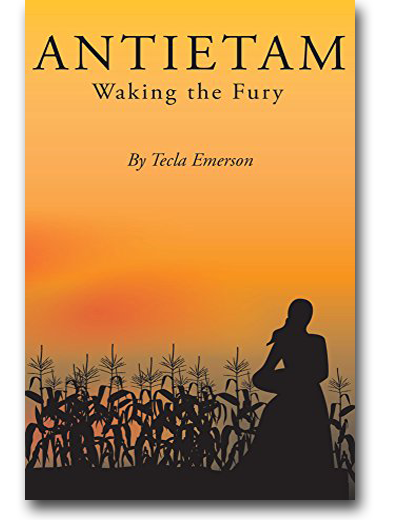 Antietam - Waking the Fury by Tecla Emerson